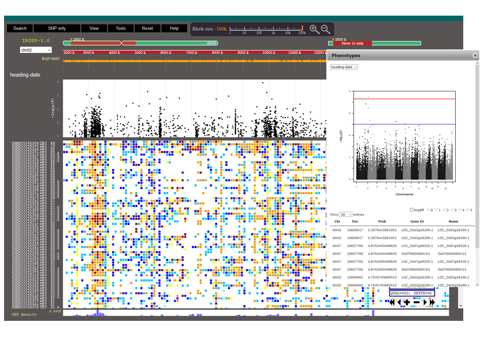 Screenshot_of_TASUKE_multiple_genome_browser